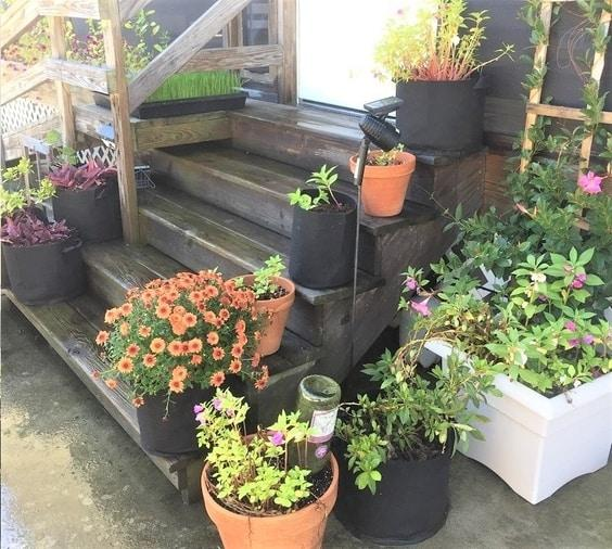 8 Impressive Ways to Growing more in Your Garden Space steps