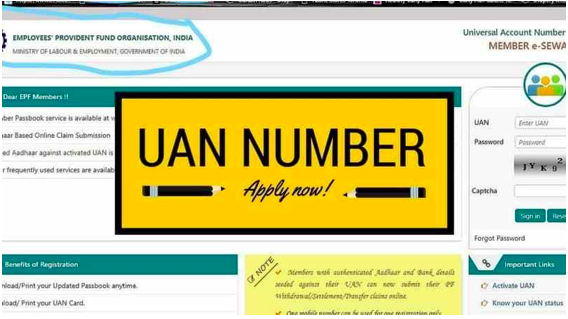 How to get your UAN Number from the Employer or the EPFO Portal?